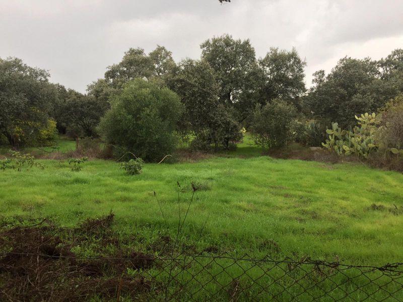 Terreno en venta,  en Castilblanco de los Arroyos  - Foto 1