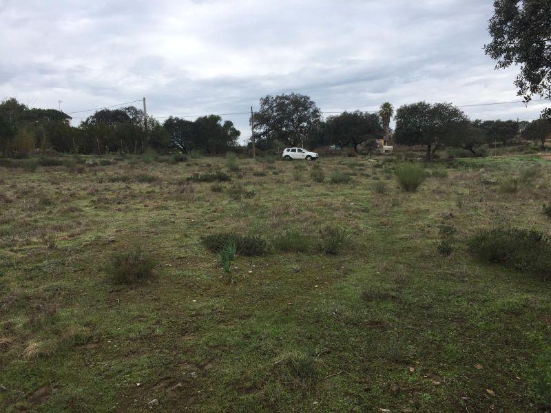 Terreno en venta,  en Castilblanco de los Arroyos